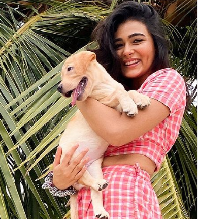 Shalini Pandey Latest Photos | Picture 4