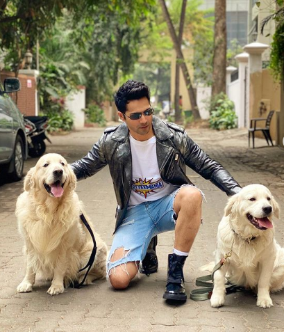 Varun Dhawan Latest Photos | Varun Dhawan Latest Photos |  4